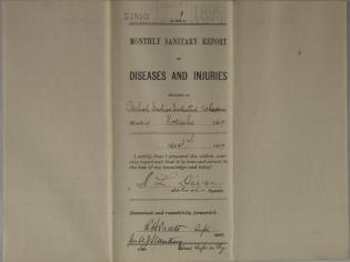 Monthly Sanitary Report of Diseases and Injuries, November 1899