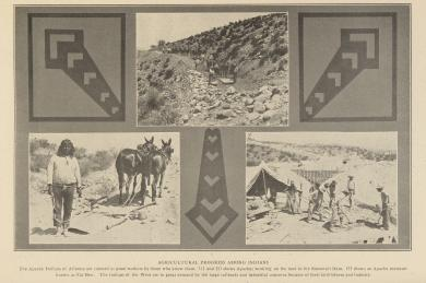 Agricultural Progress Among Indians - Apache