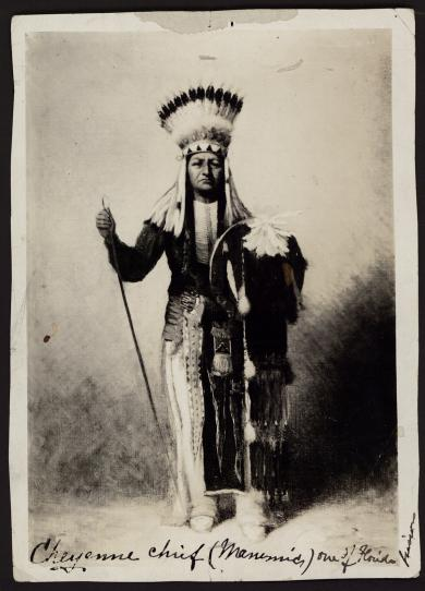 Indian Chief, c.1880