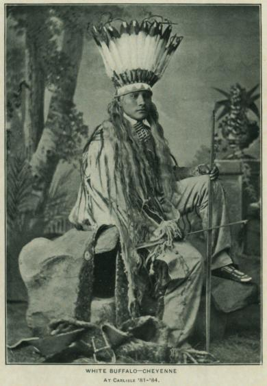 White Buffalo, #2, c.1881 [before]