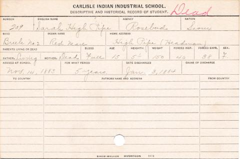 Sarah High Pipe (Red Mare) Student Information Card