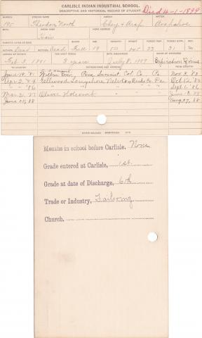 Theodore North (Hair) Student Information Card
