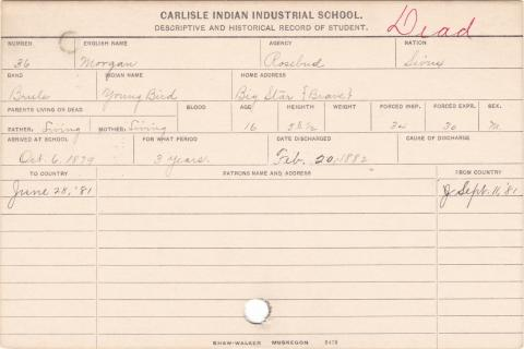 Morgan (Young Bird) Student Information Card