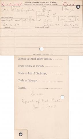 Alice Long Pole Student Information Cards