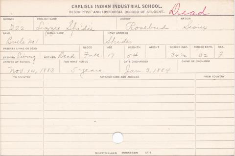 Lizzie Spider Student Information Card