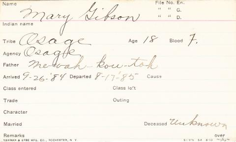 Mary Gibson Student Information Card