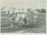 Student Plowing Field