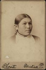 Rose White Thunder, c.1885 [after]